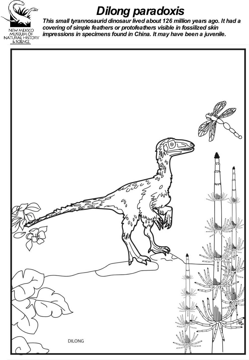 Dilong  Coloring Sheet