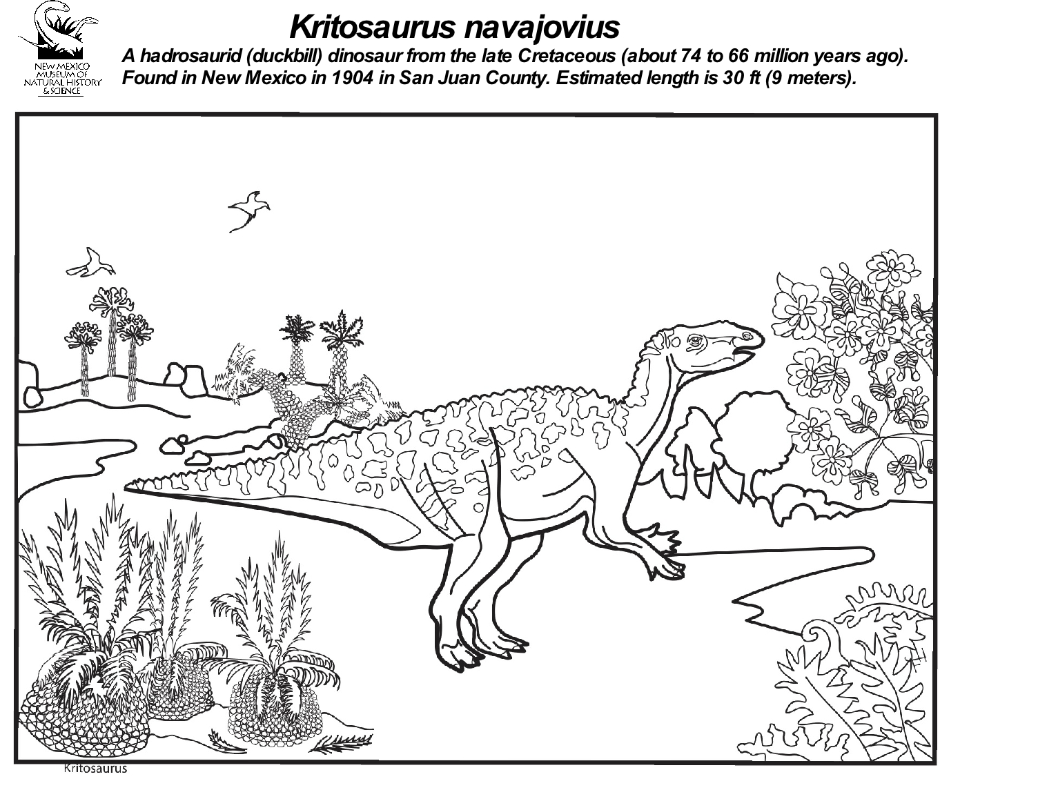 Kritosaurus  Coloring Sheet