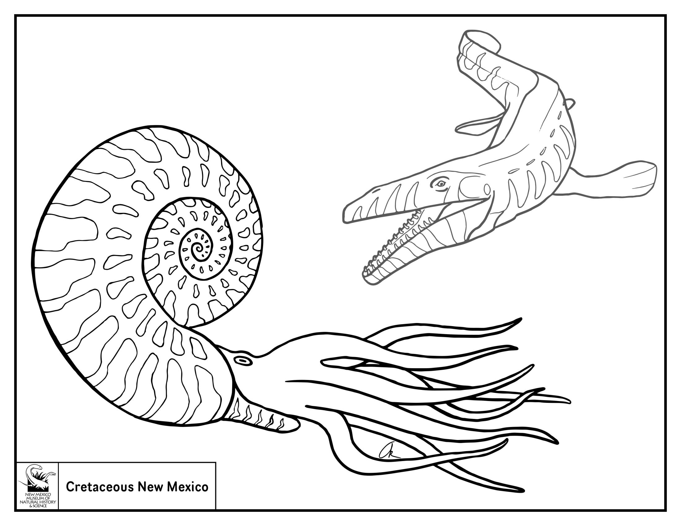 Ammonite and Mosasaur  Coloring Sheet