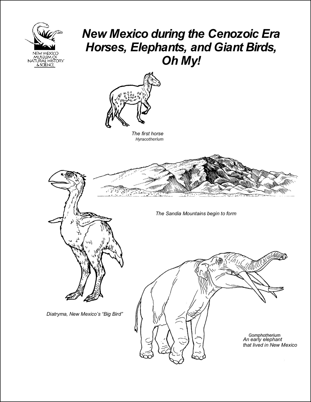 Cenezoic Era Coloring Sheet- Horses, Elephants, and Giant Birds